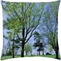 Spring Meadow Lexington Kentucky - Throw Pillow Cover Case (18