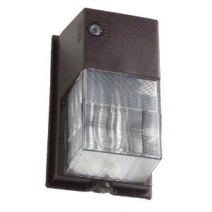 42 Watt Fluorescent Outdoor Light in Florida - 7