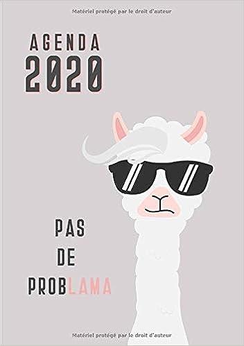 Amazon.com: Agenda: Semainier - Petit Format A5 - Lama ...