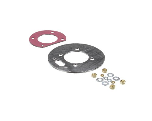 Polaris Water Heater 100093711 New Style Polaris Gasket (Polaris Water)