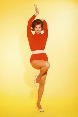 Mary Tyler Moore Full Length Leggy Pin Up 1960's 24x36 Poster from Silverscreen
