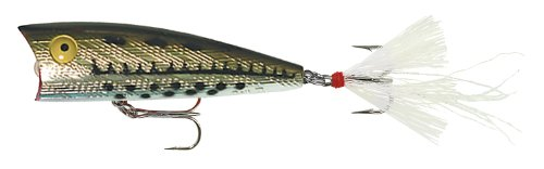 - Rebel Lures Teeny Pop R Fishing Lure (2-Inch, Ol' Bass)
