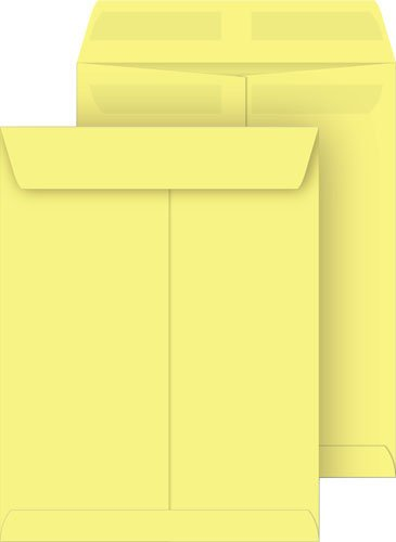 Bright Yellow 10x13 Catalog Envelopes Press /& Seal 10-Pack