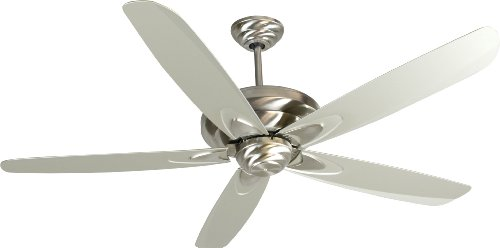 5 Blade 56' Blade (Craftmade ZE56SS5 Ceiling Fan with Blades Included, 56