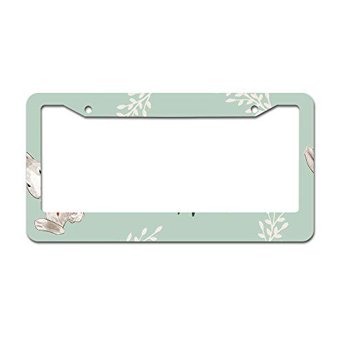 DKISEE Abstract Spring Planner Clipart License Plate Frame Aluminum Car License Plate Covers with 2 Holes 12