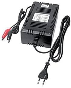 CARICABATTERIE PIOMBO 24V 3A SWITCHING con LED: Amazon.it