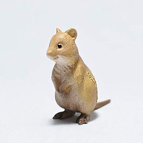 ワラビー ク アッカ 「世界一幸せな動物」 クアッカワラビー