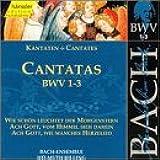 Bach: Cantatas, BWV 1-3 (Edition Bachakademie Vol 1) /Rilling