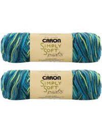 Bulk Buy: Caron Simply Soft Yarn Paints (2-pack) (Peacock Feather)