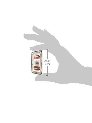transparente Van Wezel 3745918 Intermitentes para Autom/óviles