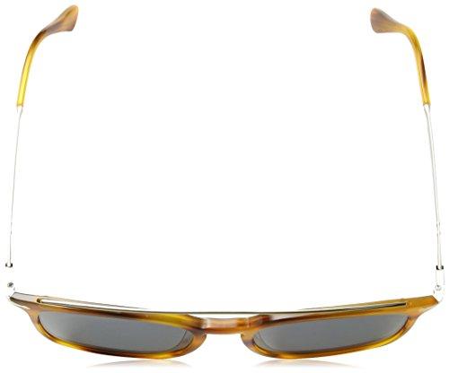 Persol Sonnenbrille (PO3173S) Striped Brown 960/56