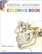 Dental Anatomy Coloring Book 2007 publication: Amazon ...
