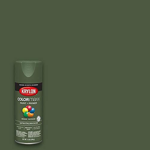 Krylon K05566007 Colormaxx Spray