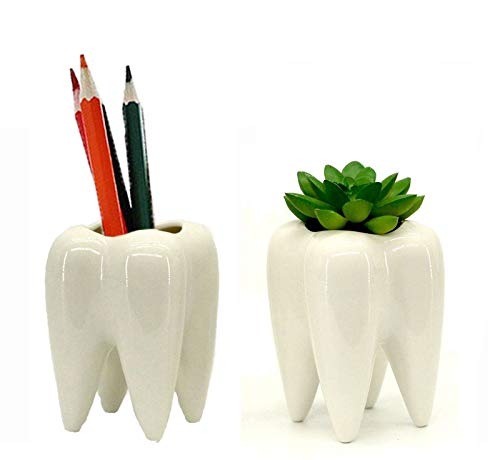 Koreyoshi 2 Pcs Teeth Pots White Ceramic Succulent Planter Pots/Mini Flower Plant Containers Cute Animal Shaped Cartoon Planter Pots Plant Window Boxes (Style 2)