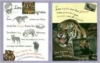 ANIMALES CON PICTOGRAMAS 4