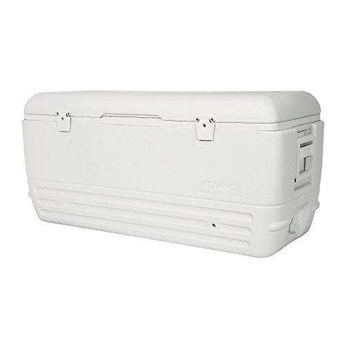 - Igloo Quick and Cool Cooler (150-Quart, White)