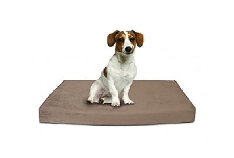 Cojín magnético para perro con memoria de forma pequeño ...