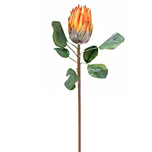 Calcifer The King Protea (Protea Cynaroides) Artificial Flowers Plants for Home Garden Wedding Party Decoration (3, Orange) 13