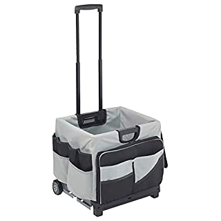 ECR4Kids Universal Rolling Cart with Saddle Bag Organizer, 17-1/2 x 15-3/4 x 16-1/2 Inches, 65 Pounds Capacity, Plastic/Canvas