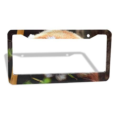 (Love beautiful Cute Red Panda Plate Frame 2pcs Newest Matte Aluminum Alloy License Plate Frame, Applicable to US Standard Car License Frame 2 Holes 12