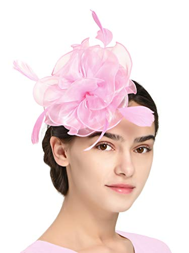 Fascinators Hat...