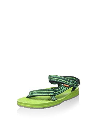 Lizard Sail Verde / Esmeralda