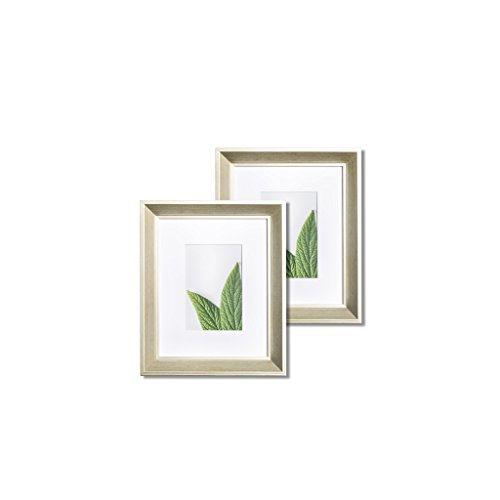 """Vista Daintree Set of two 8""""x 10"""" Picture Frames, Wide Bevel"""