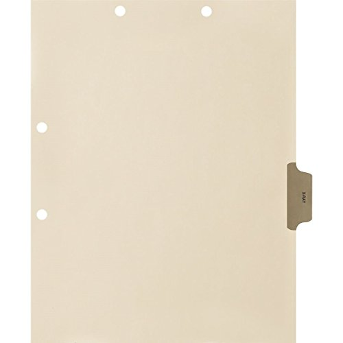 (Medical Arts Press Match Colored Side Tab Chart Dividers- X-Ray, Position 4 (100/Pkg) (56780))