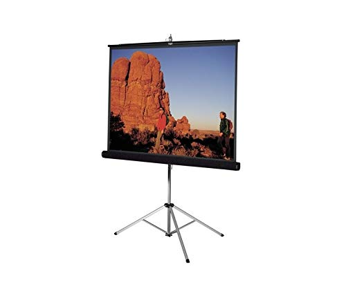 Carpeted Picture King Matte White Portable Projection Screen Viewing Area: 96