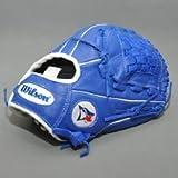 "Wilson A500 Youth Blue Jay Baseball Glove, 12"", Blue"