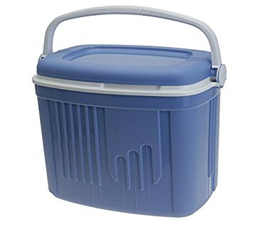 5f15fd11094 Buy Iceberg 8 Litre Cooler Box Insulated Picnic Cool Box Online at Low  Prices in India - Amazon.in