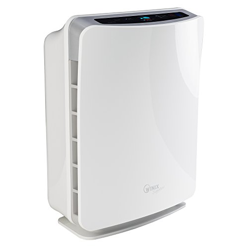 Winix U450 Air Purifier With True Hepa And Active Carbon