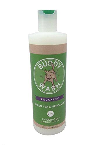 Cloud Star Buddy Wash, 2 in 1 Shampoo + Conditioner, Green Tea & Bergamot 16 fl oz