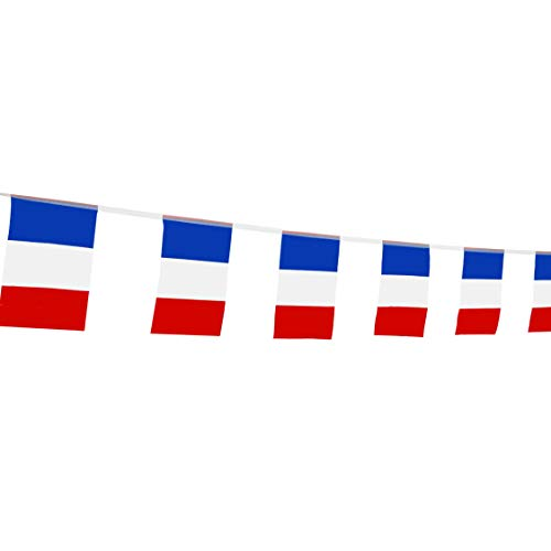 France Flag French Flag,LoveVC 100 Feet National Country World String Flags Banners,International Party Decorations Supplies For Olympics,World Cup,Sports Clubs