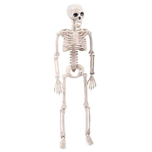 Costume For Et On Halloween Crossword (Fan-Ling Jointed Human Skeleton Decoration ,Halloween Party Prop Decoration,Halloween Skeleton,Halloween Props, Outdoor Decoration Party, Best Halloween Decoration)