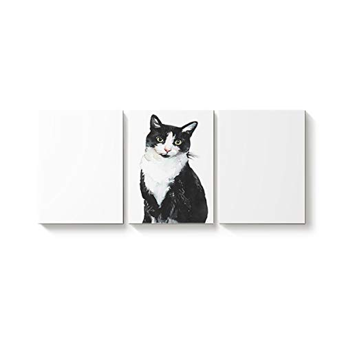 3 Piece Canvas Wall Art Oil Painting Home Art Decor,Lovely Cat Animal Pattern Black and White Pictures Artworks for Office,Stretched by Wooden Frame,Ready to Hang,30x40inx3 Panels