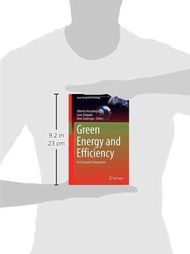 Green Energy and Efficiency: An Economic Perspective (Green Energy and Technology)