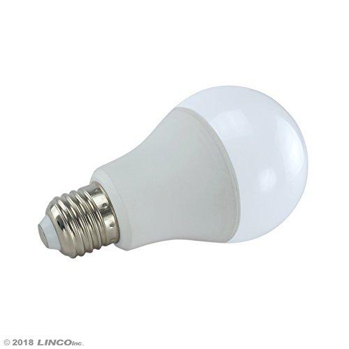 LINCO Lincostore Studio Lighting LED 2400 Lumens Umbrella Light Kit AM249 by Linco (Image #3)