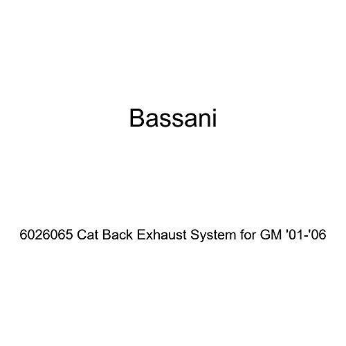 Bassani 6026065 Cat Back Exhaust System for GM - Exhaust Cat Back Bassani