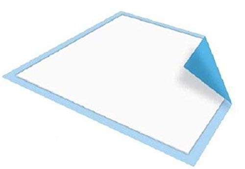 Platinum Care Pads Disposable Underpads Size 17X24 Case of 300 Blue and White Great for Changing Table and Surfaces ()