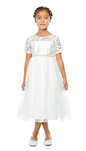 Off-White Embroidered Mesh Tulle Flower Girl First Communion Pageant Wedding Birthday Dress SK769-8 ()