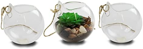 NeutralPure ECO Hanging Glass Plant Terrarium (3 Pcs)