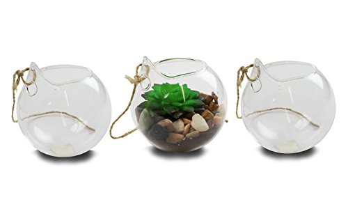 Eco Christmas Decorations - NeutralPure ECO Hanging Glass Plant Terrarium (3 Pcs)