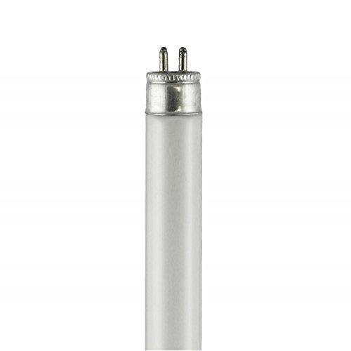 Cool-White Fluorescent Lamp, 10W, 16.5''