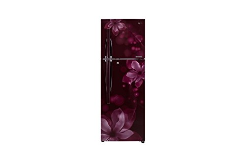 LG 255 L 3 Star Frost Free Double Door Refrigerator GL Q282RSOY, Purple, Inverter Compressor