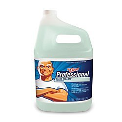 Mr. Clean Professional 1-Gallon Glass Cleaner 3700025041