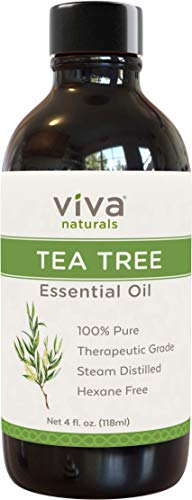 Viva Naturals Organic Tea Tree Essential Oil 4 oz - Natural Tea Tree Oil for Hair and Body Blends ()