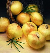 Texas Supersweet Onion 200 Seeds #0624 Item Upc#650348692100