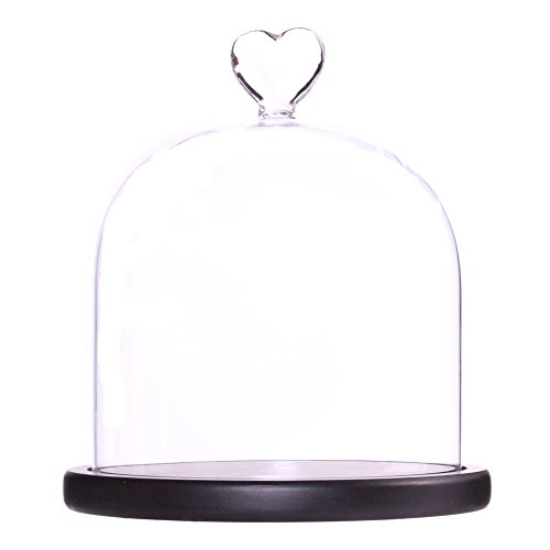 Moonlear Clear Glass Dome Display Case Heart Handle Cloche with Wood Base Dia 6 inch