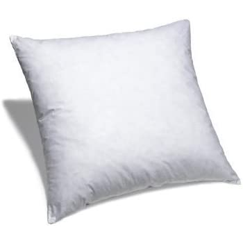 Amazon Com 24 Quot X 24 Quot Pillow Insert Non Woven Home Amp Kitchen